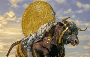 Picture of Phe bò đang rất tự tin ngay cả khi chỉ số chính về giá của Bitcoin chạm mức thấp mới