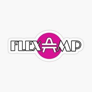Picture of AMP của Flexa đạt mức cao mới sau khi niêm yết trên Coinbase, tăng 1.700% vào năm 2021