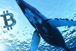 Ảnh của Tin vắn Crypto 11/07: Số lượng cá voi nắm giữ trên 100.000 BTC chạm mức cao nhất trong hơn 2 năm qua cùng tin tức Ripple, Chainswap, Theta, Chainlink, NFT, Vechain, Tezos