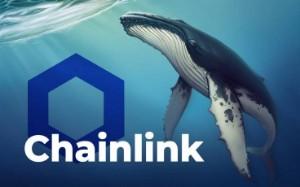 Ảnh của Cá voi Chainlink nhanh chóng buy the dip, gom 1,45 tỷ USD chỉ trong một tuần