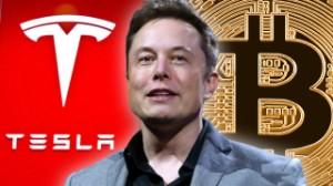 """Ảnh của Dù """"chê"""" nhưng Tesla của Elon Musk đang hời 1 tỷ USD từ việc hold Bitcoin"""