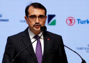 Picture of Turkey seals 11 bcm natural gas accord with Azerbaijan - minister