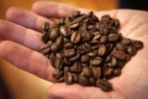 Picture of Shipping disruptions to keep coffee prices high for longer, say experts
